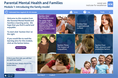 Parental mental health and families