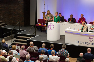 Dr Sheila Fish (pictured), SCIE, speaking to the Church of England General Synod